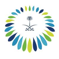 المركز السعودي للشراكات الاستراتيجية الدولية