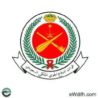 قوات الدفاع الجوي